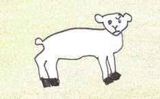 Schaf als Kuscheltier