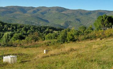Berge im Hintergrund. Vorn Bienenstöcke