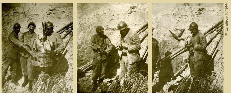 żołnierze i gołębie pocztowe