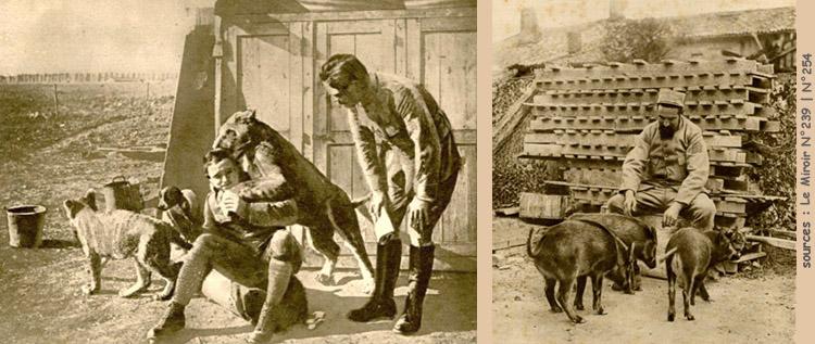 Żołnierz z lwem – Żołnierz z trzema dzikimi świniami