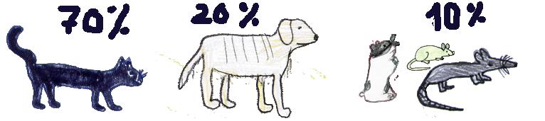 70% Katzen, 20% Hunde und der Rest sind Säugetiere, die im Käfig sitzen